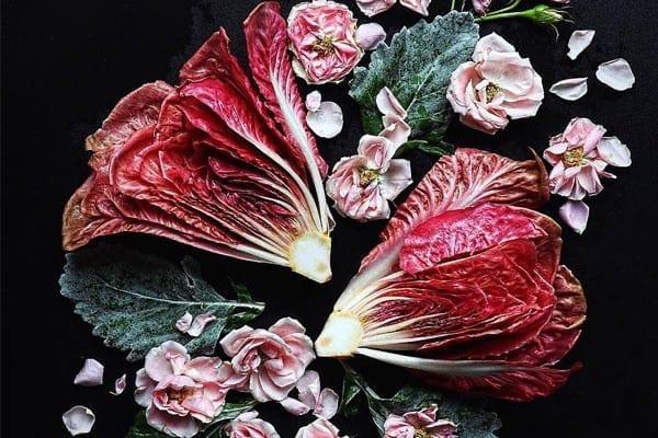 Ροζ μαρούλι, η νέα τρέλα του Instagram